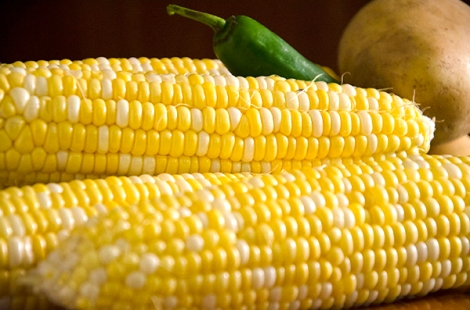 Corn for Soup