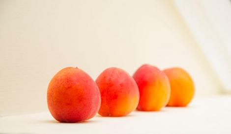 110_0850 LS Apricot cherry pistachio tart