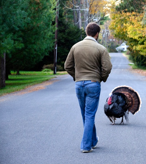 Peter and Turkey