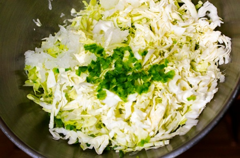 Cabbage Slaw for Pulled pork