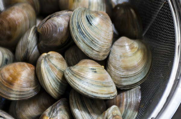 how to cook clams in the oven